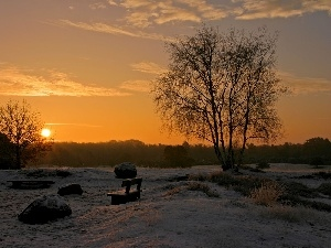 viewes, sun, Bench, trees, west, Bush, snow