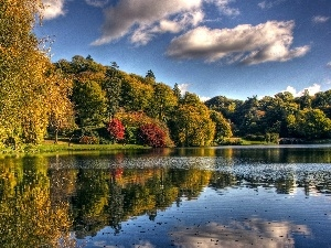clouds, viewes, Sky, lake, autumn, trees