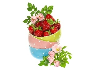 Flowers, rose, Bowls, strawberries, color