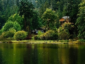 Houses, forest, lake