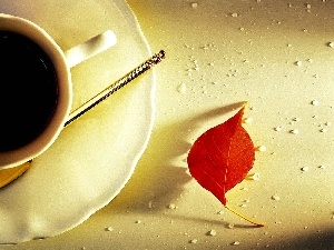 leaf, Red, cup, coffee