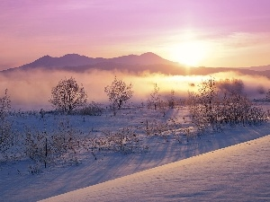 Fog, Mountains, winter