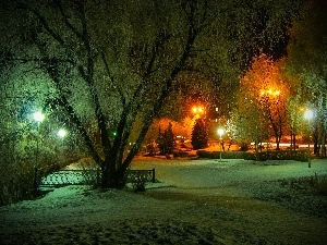 Night, viewes, Lamps, Park, winter, trees
