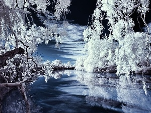 trees, viewes, Aura, River, Winter