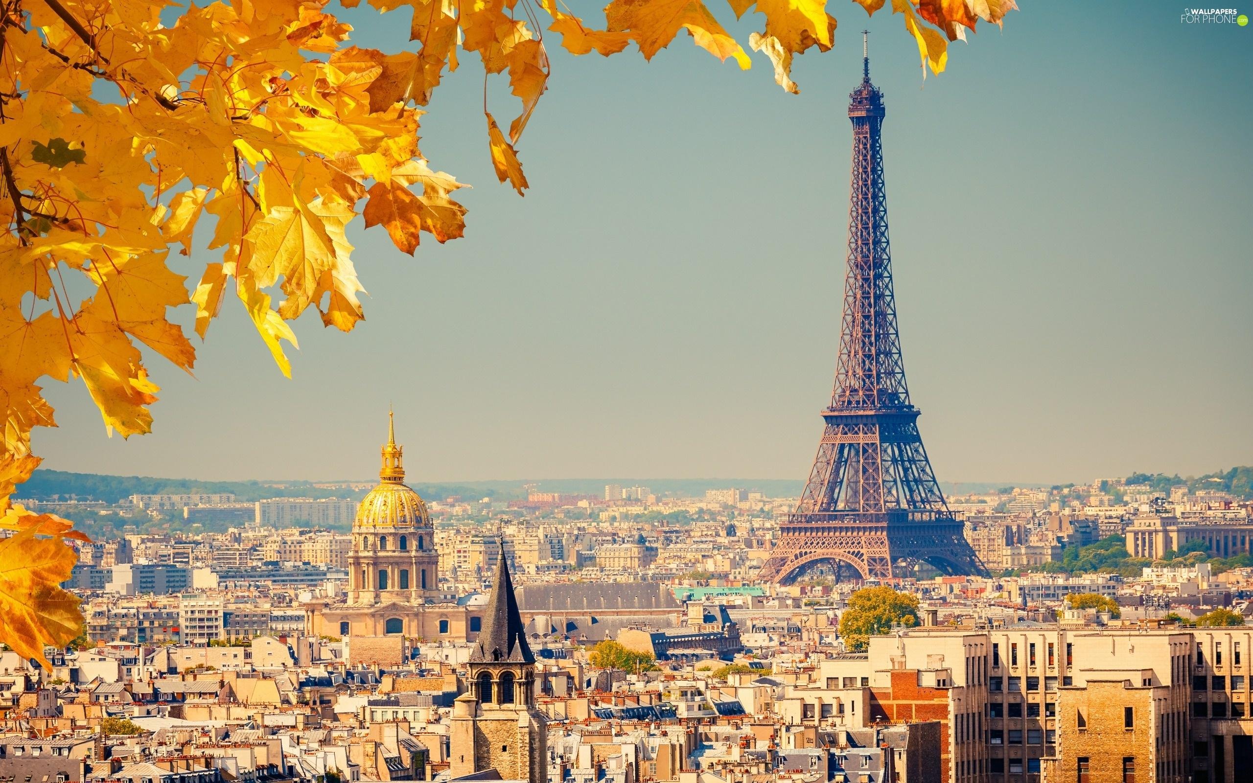 Panorama, Autumn, Eiffla, Paris, Tower