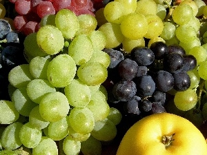 Grapes, Apple