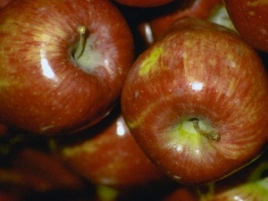 apples, browned, shiny