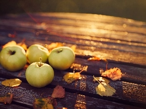 apples, Bench, autumn, Leaf