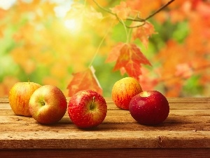 apples, autumn