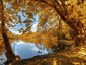 autumn, Park, lake