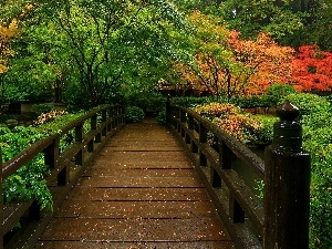 wooden, Park, autumn, bridge
