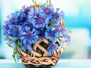 basket, bouquet, cornflowers