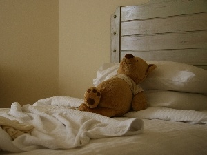 teddy bear, resting, White Bed, plush toy