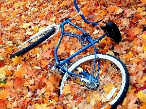 Meadow, Leaf, Bike, Autumn