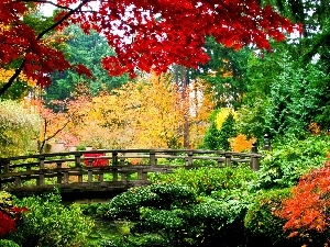 bridges, autumn, Park