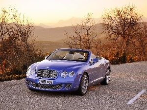 skin, Bentley Continental GTC, Bright