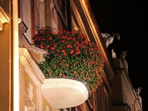 buildings, flowered, Pozna?, old town, Night, Balcony