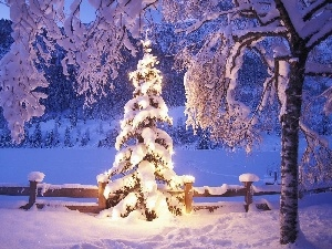 lights, winter, christmas tree