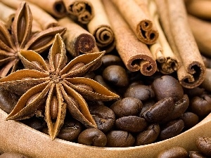 cinnamon, anise, coffee, spice, grains