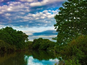 River, viewes, clouds, trees