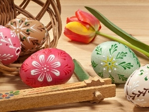 Easter, composition, eggs, tulip, basket