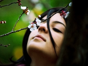 flourishing, trees, face, branch, Women