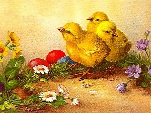 Easter, eggs, Flowers, chickens