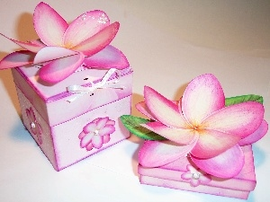 Flowers, frangipani, gifts, Artificial, Boxes
