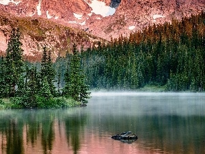 River, woods, Fog, Mountains