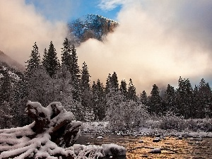trees, Mountains, Fog, winter, viewes, River