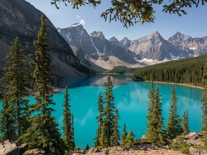 Banff National Park, Lake Moraine, Mountains, forest, viewes, Alberta, Canada, trees