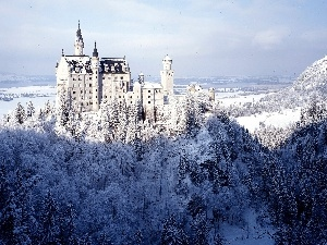 forest, Castle, winter