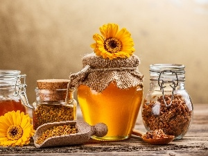 gerberas, honey, Propolis