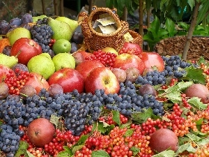 basket, harvest, truck concrete mixer, grape, apples