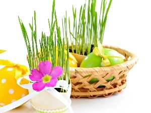 grass, flower, easter, eggs, basket
