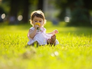 small, Flower, grass, girl