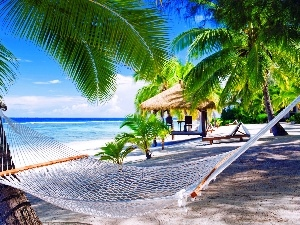 Hammock, sea, Palms