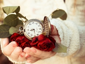 Watch, Red, Hands, Womens, ##, roses