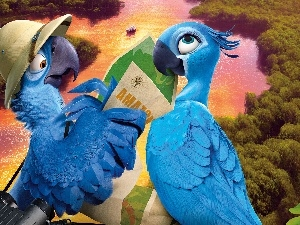 Rio2, brook, Hat, Classifieds