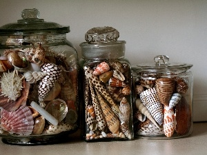 Shells, decoration, hobby, Jars