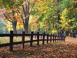 Autumn, wooden, Hurdle, Park