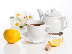 jug, cup, daisy, Lemon, tea