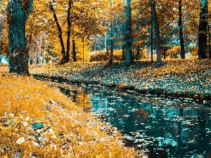 trees, River, Leaf, autumn, viewes, Park