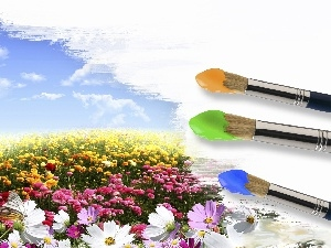 Meadow, Flowers, Sky, clouds, Brushes