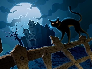 Fance, halloween, moon, Night, house, cat