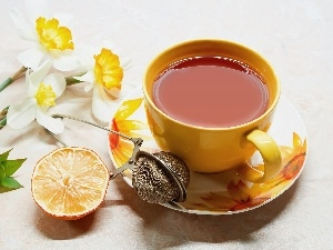cup, Lemon, narcissus, tea