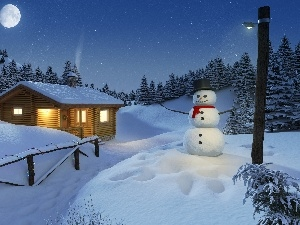 woods, house, Night, winter, Snowman, Mountains