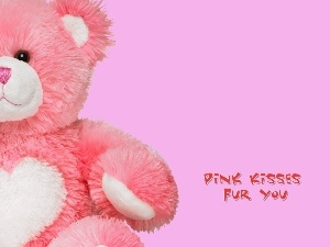 Fur, teddy bear, Pink