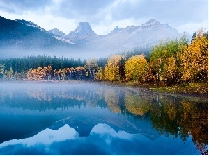 reflection, Fog, lake, forest, Mountains