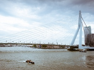 Erasmus Bridge, Netherlands, River, rotterdam